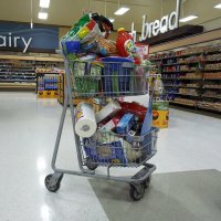 Shopping cart full of stuff